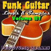 Funk Guitar Loops & Samples Volume#1 by Pro Studio Library