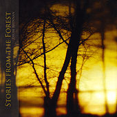 Stories from the Forest by Thom Brennan