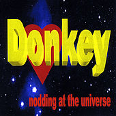 Play & Download Nodding At the Universe by Donkey | Napster