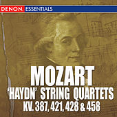 Play & Download Mozart: 'Haydn' String Quarets - KV. 387, 421, 428 & 458 by Mozarteum Quartet Salzburg | Napster