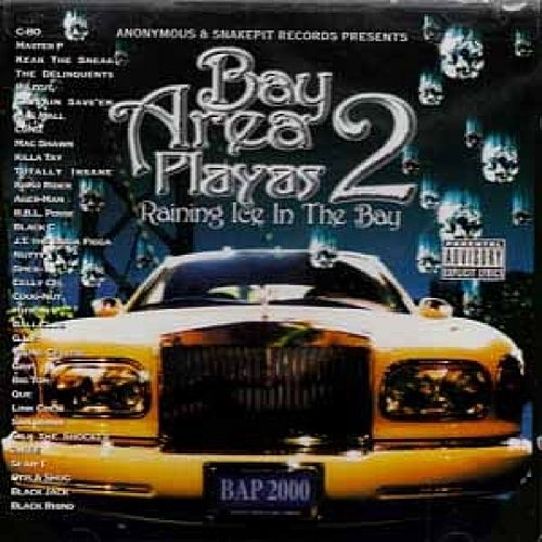 Play & Download Bay Area Playas 2: Raining Ice In The Bay by Various Artists | Napster