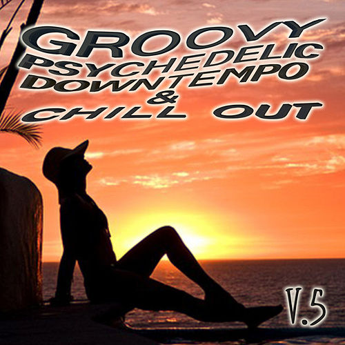 Play & Download Groovy Psychedelic Downtempo & Chill Out V5 by Various Artists | Napster