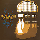 Homegrown Istanbul, Vol. 2 von Various Artists