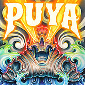 Areyto by Puya