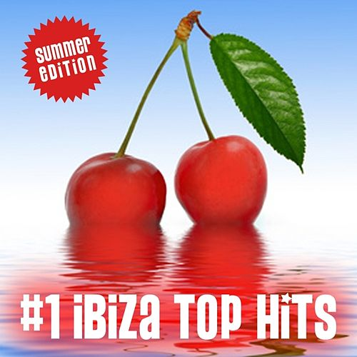 Ibiza Top Hits, Vol. 1 by Various Artists