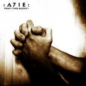 Pray (This Agony) by A7ie