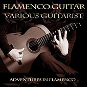Play & Download Flamenco Guitar by Various Artists | Napster