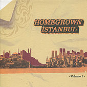 Homegrown İstanbul, Vol. 1 by Various Artists