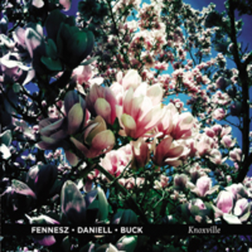 Play & Download Knoxville by Fennesz/Daniell/Buck  | Napster