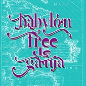 Play & Download Babylon Free De Ganja by Various Artists | Napster