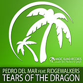 Play & Download Tears Of The Dragon by Pedro Del Mar | Napster