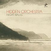 Night Walks by Hidden Orchestra