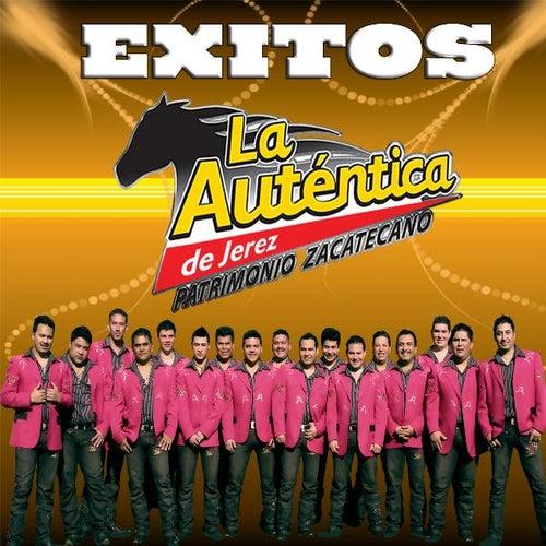Play & Download Exitos by Banda Autentica de Jerez | Napster