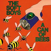 A Can Of Bees von The Soft Boys