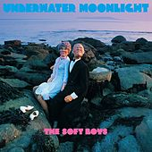 Underwater Moonlight von The Soft Boys