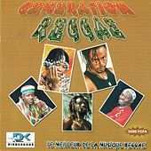Play & Download Generation Reggae, le meilleur de la musique reggae by Various Artists | Napster