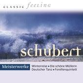 Classic Feeling: Meisterwerke Schubert von Various Artists