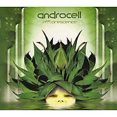 Play & Download Efflorescence [CD Rec 003](Chill-out / Psy-dub / Downtempo) by Androcell | Napster