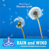 Relaxation Systems (Nature Sounds): Rain and Wind by Mark Cosmo's Relaxation Systems