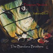 Ambient Blues by The Bandana Brothers