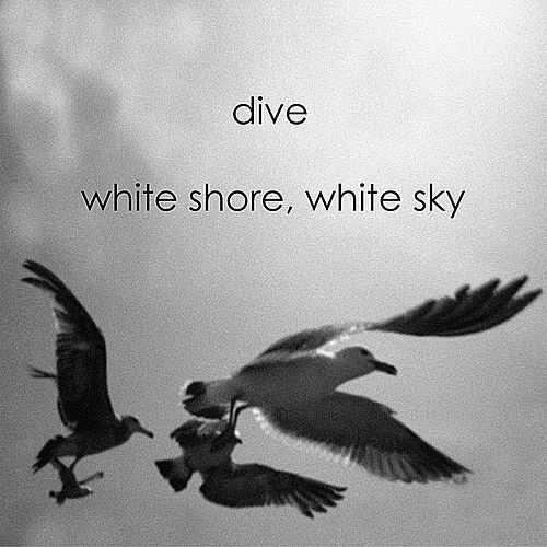 White Shore, White Sky by Dive