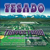 Play & Download Trayectoria by Pesado | Napster