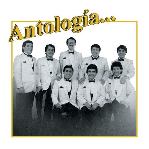 Play & Download Antología...Los Sonor's by Los Sonor's | Napster