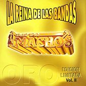 Play & Download La reina de las bandas Vol. II by Banda Machos | Napster