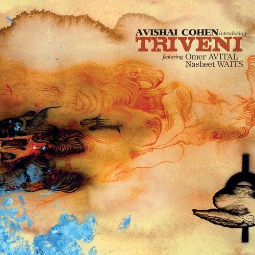 Introducing Triveni by Avishai Cohen (bass)
