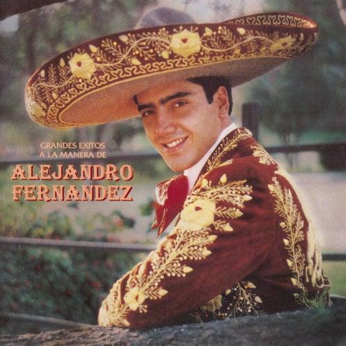 Play & Download Grandes Exitos A La Manera De Alejandro Fernandez by Alejandro Fernández | Napster