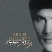 Canciones De Amor De Miguel Gallardo by Miguel Gallardo