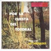 Play & Download Por La Cuesta Del Totoral by Los Chalchaleros | Napster