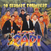 Play & Download 20 Grandes Sonideras by Los Capi | Napster