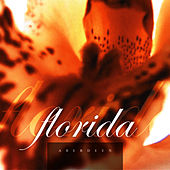 Play & Download Florida by Aberdeen | Napster