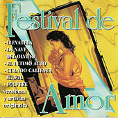 Festival de amor by Various Artists