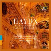 Play & Download Haydn, J.: Mass No. 14,