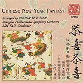 Play & Download Chinese New Year Fantasy by Yau Lim | Napster