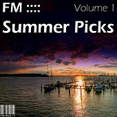 FM Summer Picks - Volume 1 by Various Artists