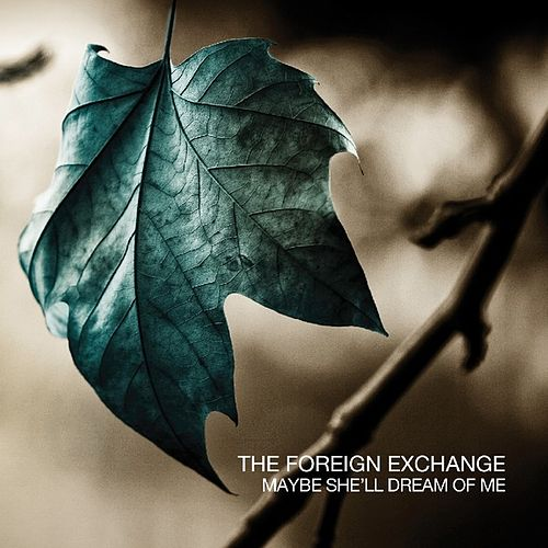 Maybe She'll Dream Of Me by The Foreign Exchange
