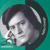 Play & Download Inolvidables RCA - 20 Grandes Exitos by Palito Ortega | Napster