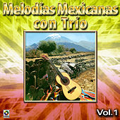 Play & Download Melodias Mexicanas Con Trio Vol. 1 by Various Artists | Napster