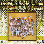 Play & Download La Siembro Cosecho Y Vendo by Los Pajaritos De Tacupa | Napster