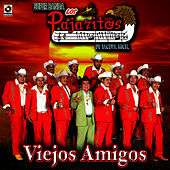 Play & Download Viejos Amigos - Los Pajaritos De Tacupa by Los Pajaritos De Tacupa | Napster