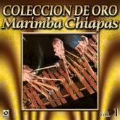 El Bodeguero by Marimba Chiapas