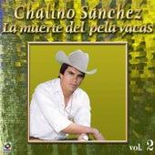 Play & Download La Muerte Del Pela Vacas by Chalino Sanchez | Napster