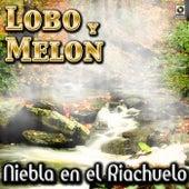 Niebla En El Riachuelo - Lobo Y Melon by Lobo Y Melon