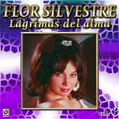 Lagrimas Del Alma Vol. 3 by Flor Silvestre