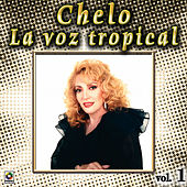 Play & Download La Voz Tropical Vol. 1 by Chelo | Napster
