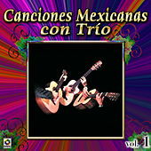Play & Download Canciones Mexicanas Con Trio Vol. 1 by Various Artists | Napster