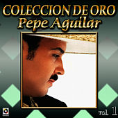Play & Download Botellita De Tequila by Pepe Aguilar | Napster